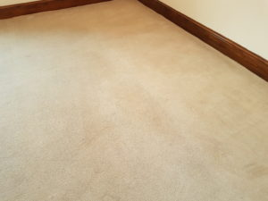 End of tenancy commercial carpet cleaning Doncaster After